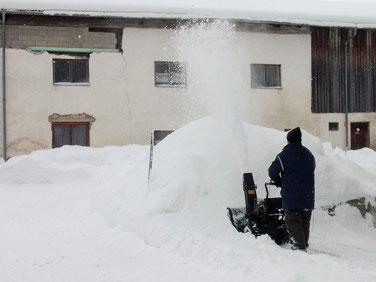 Ein halber Meter Neuschnee