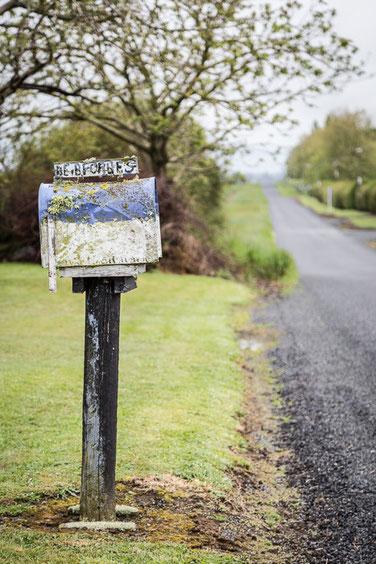Nuova Zelanda - strada verso Auckland