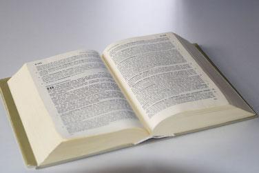 Rechtsberatung und Rechtsvertretung Strafrecht und Ordnungswidrigkeitsverfahren (OWI-Verfahren)