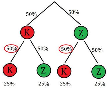 Baumdiagramm mit Wahrscheinlichkeiten zur Veranschaulichung der stochastischen Unabhängigkeit