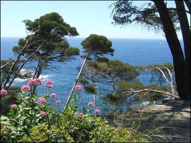 Vue sur la mer depuis le Cap Sicié