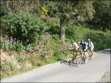 Randonnée à vélo à Six Fours dans le Var