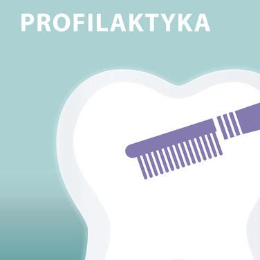 Prophylaxe Die Zahnkünstler Hannover