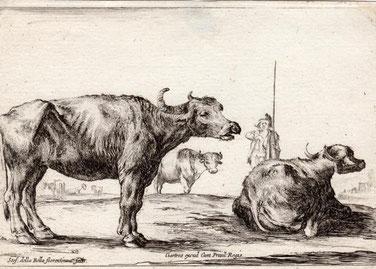 Rastende Kuh, Kupferstich, Maße ca. 11,2 x 16 cm, Preis: 200 Euro.  (Passt zu den Radierungen von Adrian van de Velde auf dieser Website)