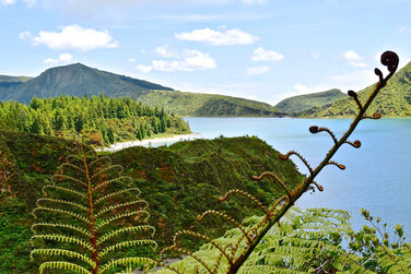 Azores, Sao Miguel: 7-Day Itinerary - Lake Fogo