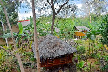 2 Weeks Itinerary Palawan - Yoga village