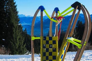 Voyage en Bavière - Descente en luge dans les alpes bavaroises