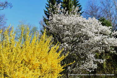 printemps Bavière