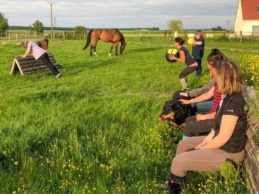 Cours collectifs pour entraînement physique du cavalier, Ecurie les Rouillons, 89 Sens