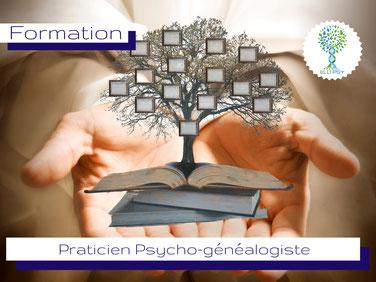 www.ellipsy.fr, formation qualifiante Praticien en relation d'Aide, devenir professionnel de l'accompagnement, thérapeute en relation d'aide