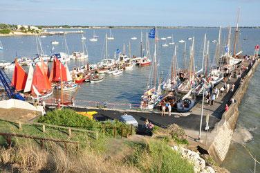 Le port sud accueille les vieux gréements...