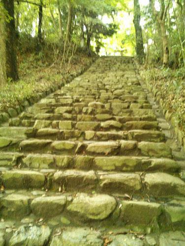 垂裕神社参道の石段の写真