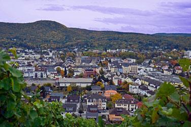 picture bad neuenahr Weinberge mit Panoramablick