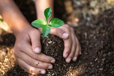 Education autour du compostage