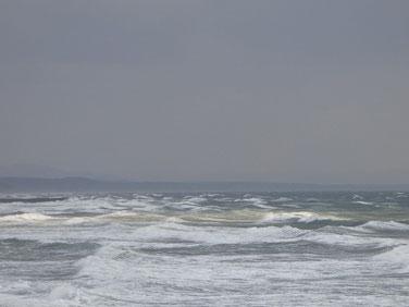 今年は暖冬でガッツリ北西が吹く事が無かったのですが、今日は久しぶりに冬らしい風が吹いています。ちょっとした台風張りですよ~