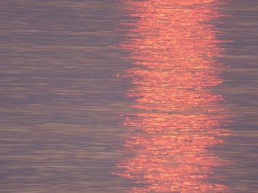 夕日のラインがキレイです