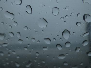 絶賛梅雨なう。