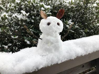 白うさぎ雪だるま♪