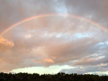 画面に入り切れないほどの虹!! ダブルでした♪