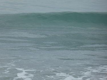 今日も海が澄んでいました。
