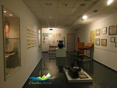 Museo Pedagógico de Aragón, en Huesca.