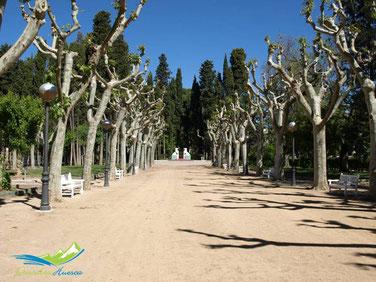 Parque Miguel Servet Huesca