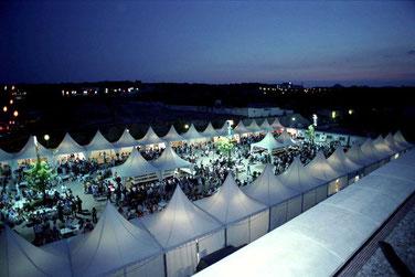 Festival vino Somontano