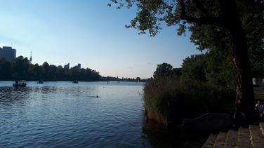 Kleines Boot ausborgen und damit auf der Alten Donau herumfahren :)