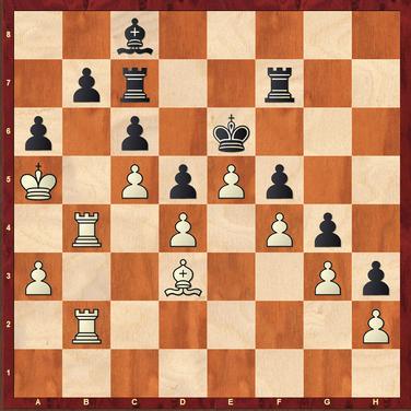 Lüneburger Schachfestival 2018