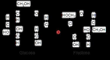 Strukturformel der Saccharose.