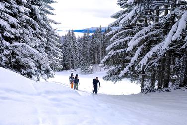 Top 6 Winter Activities in Slovenia - Ski Touring at Klek