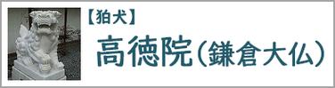 高徳院(鎌倉大仏)の狛犬
