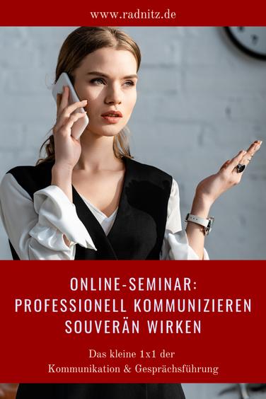 Online-Seminar Professionelle Kommunikation