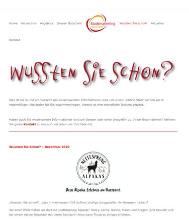 Website Stadtmarketing Seesen