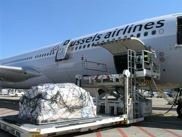 A330 of Brussels Airlines unloading cargo at Dakar  /  source: hs