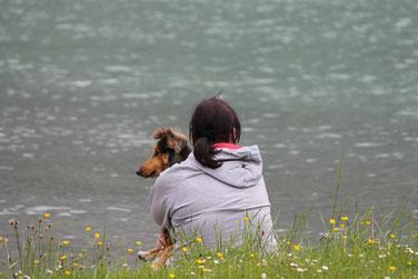Hundephysiotherapie, Hundeosteo, Hundephysio, Hundeosteopath, Hundephysiotherapie Augsburg