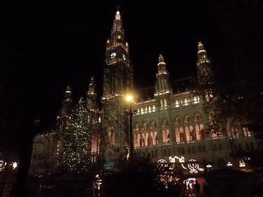 Weihnachtsbaum vor dem Rathaus in Wien