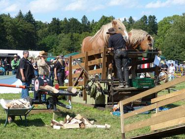 Die Tretmühle ist ein Gerät für die Arbeit mit Pferden der besonderen Art. Die Pferde laufen wie auf einem Laufband und erzeugen dabei kinetische Energie, die sich ggf. auch mit Hilfe eines Generators in elektrische Energie umwandeln lässt.