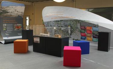 Die Ausstellung in Norderney