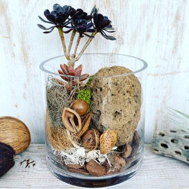 8月1dayレッスン『多肉植物×溶岩石 テラリウム』
