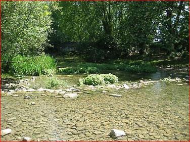 La rivière Mosson