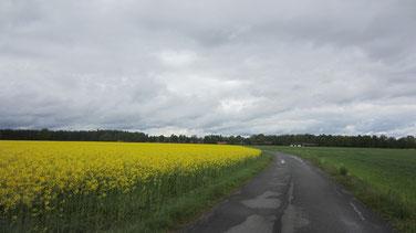 Straße von Malilla und durchwachsenes Wetter