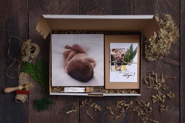 Babybauchshooting im Wald, Schwangerschaftsfotografie, Babybauch