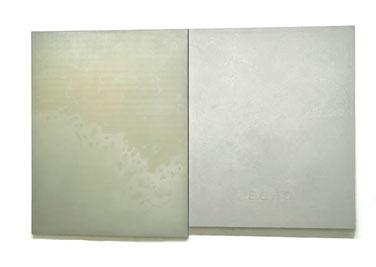 Echo und Narziss  2001/2008  Kunstharz, Steinmehl, Pigment, Ölfarbe auf Leinwand 2 Teile  180 x 140 x 3,5 cm / 170 x 140 x 6 cm