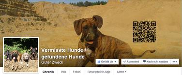 vermisste Hunde / gefundene Hunde
