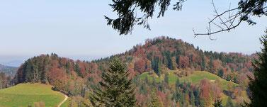der Hohgrat, höchster Punkt des Thurgaus