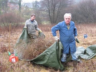 Das Schnittgut wird mit einer von Hand gezogenen Plane aus dem Niedermoor heraustransportiert. Foto: Eva Lisges