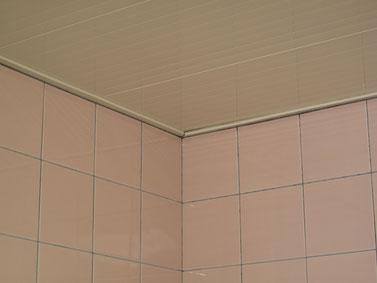 バスルーム(水垢)クリーニング