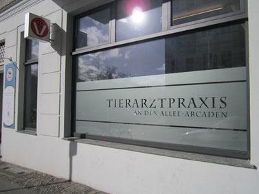 Tierarztpraxis an den Allee-Arcaden, Greifenhagener Straße 45, 10437 Berlin, 50 Meter vom Ausgang der U+S-Bahn Schönhauser Allee