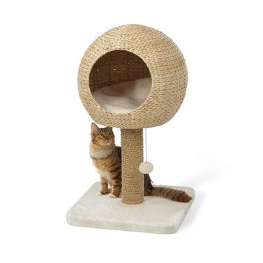 Kratzbaum Katze natur